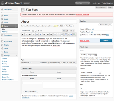 This is the picture of an example of  the WordPress Administrative Panel